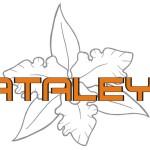 Kataleya Shoes- calzado de damas