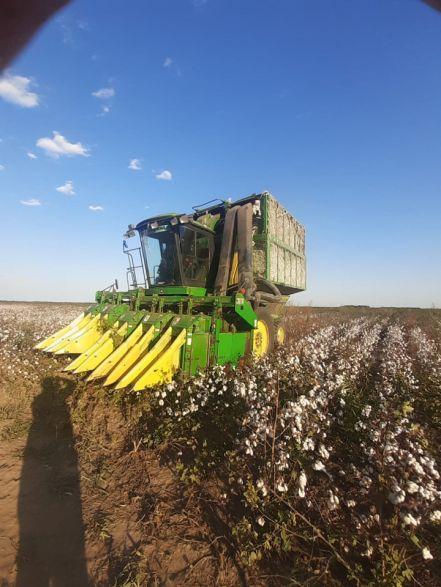 233510W440 Chaco: Refinancian A La Industria Del Algodón - Empresas Textiles