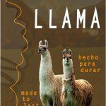 Catalogo Llama 2019 Sustentabilidad De La Llama - Moda Sostenible