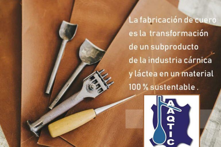 Cuero Aaqtic Fundamentos Básicos De La Transformación De Una Piel Vacuna En Cuero
