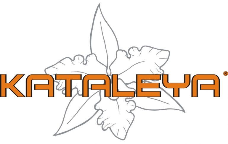 C6Ef6Ae0Fa09D5A6413A013F95454A87 Kataleya Shoes -