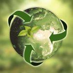 Sostenibilidad Naturaleza Tierra Hojas Flechas Sostenibilidad: La Ropa Interior Green Marca Tendencia