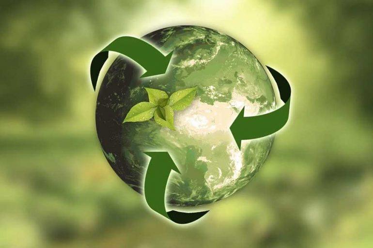 Sostenibilidad Naturaleza Tierra Hojas Flechas Sostenibilidad: La Ropa Interior Green Marca Tendencia - #Sostenibilidad