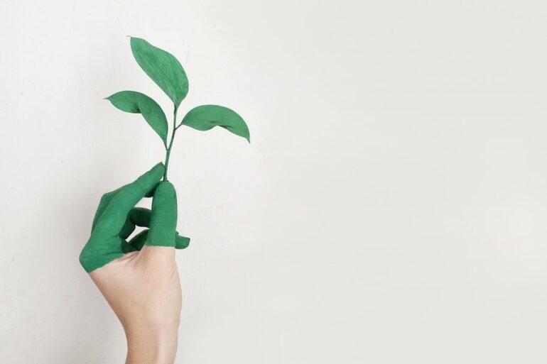 Sostenibilidad: ¿Qué Es El Greenwashing Y Cómo Podemos Evitarlo?