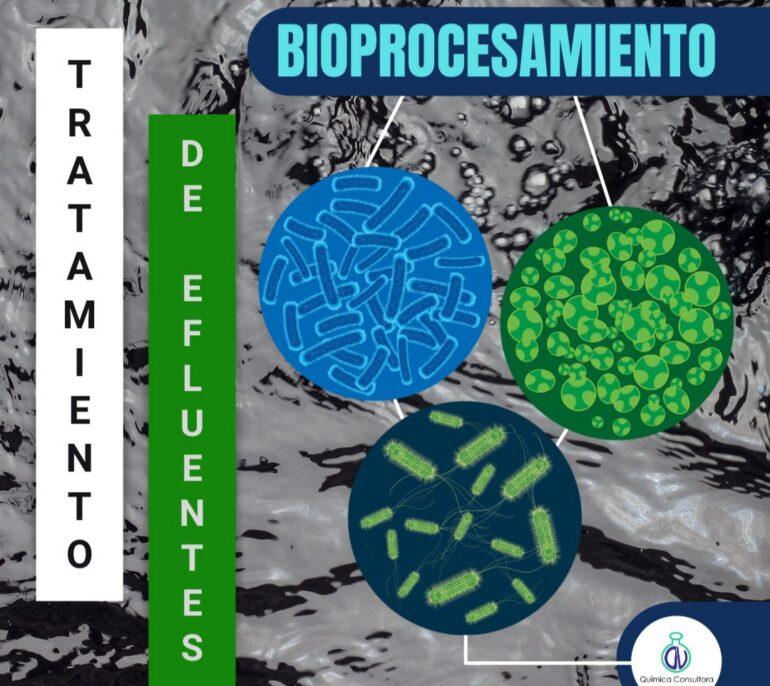 20210801 212846 Tratamiento De Efluentes En La Industria Textil: Bioprocesamiento - Productos Químicos Textiles