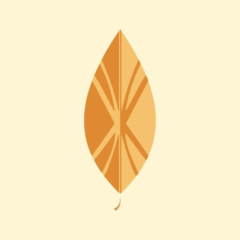 Alkimia Textil Ancestral Alkimia Textil Ancestral -